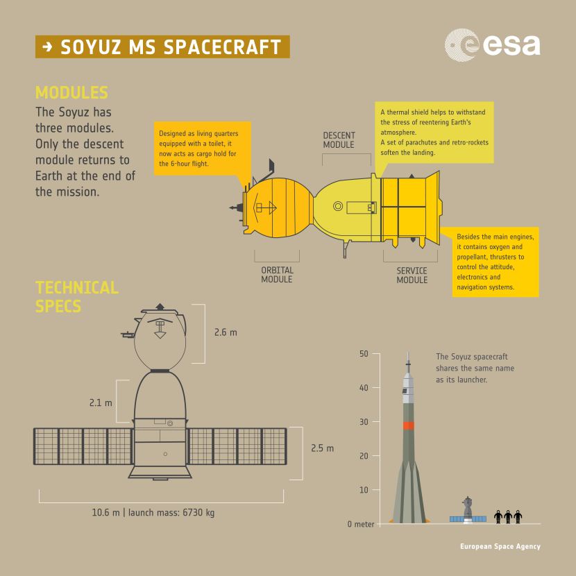 Soyuz_MS_spacecraft_infographic_-_Modules_and_Specs.png